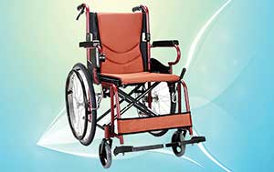 Elder Care India - Mobility Aids